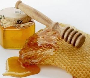 fuoco di Sant'Antonio miele di eucalipto